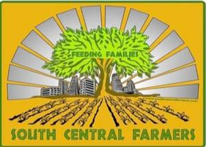 South Central Farmers Mt. Washington Produce Collective