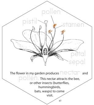 Plants_PeopleNeedbees-1